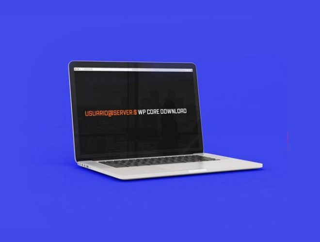 web hosting wordpress wp cli